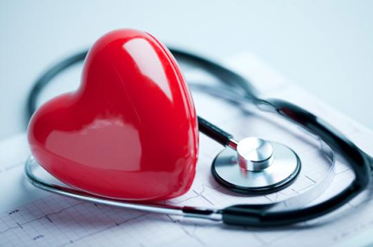 Cardiovascular Health Jeffry Gerber, MD