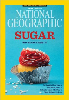 national-geographic-sugar-love-240