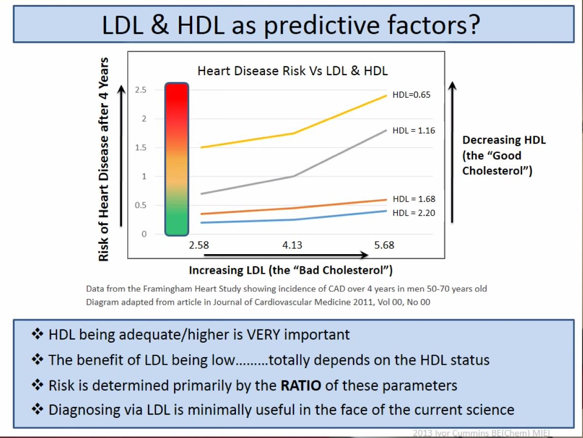 ivor cummins ldl hdl predictors
