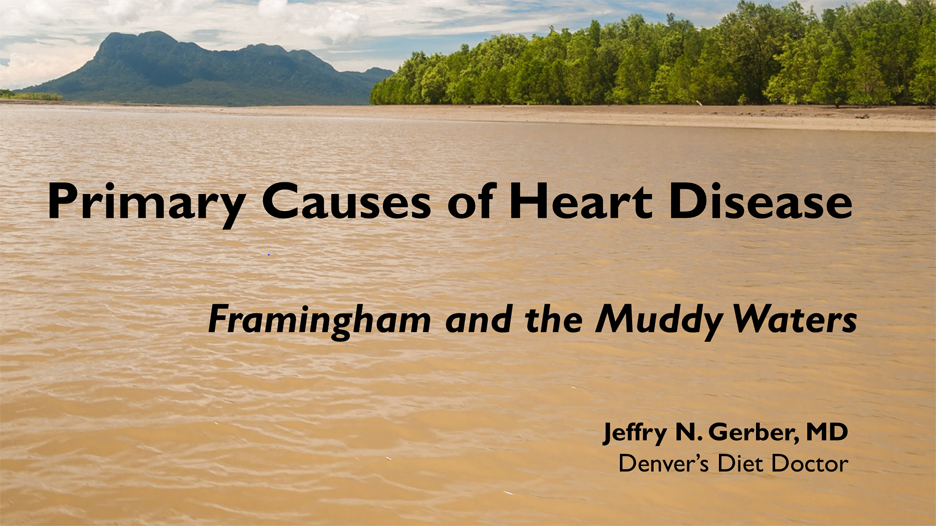 Primary Causes of Heart Disease